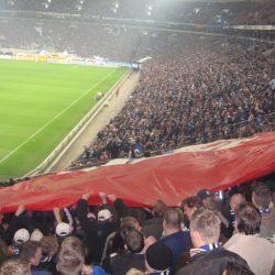 Schalke - HSV